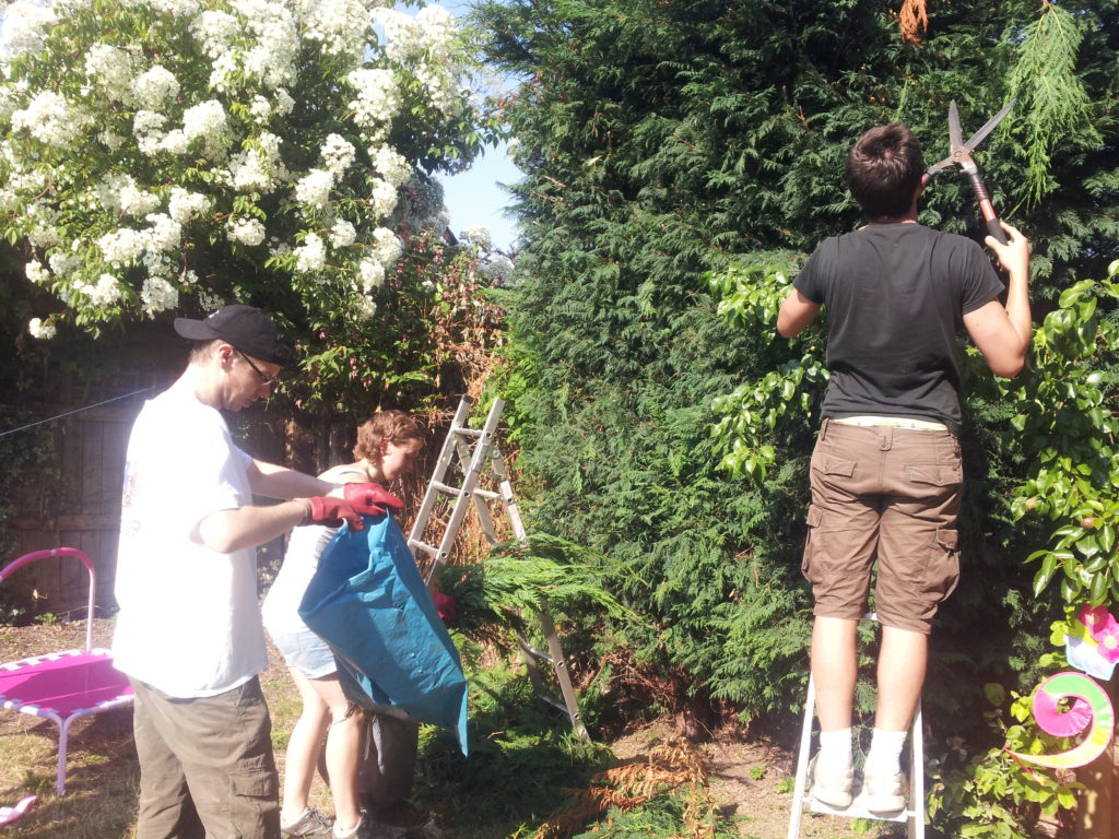 Gardening-Project-July-13-5